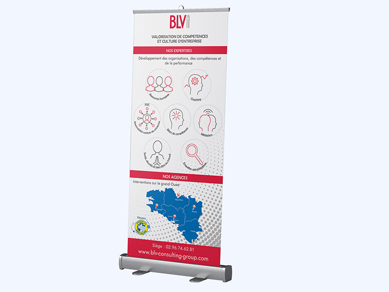 BLV Consulting